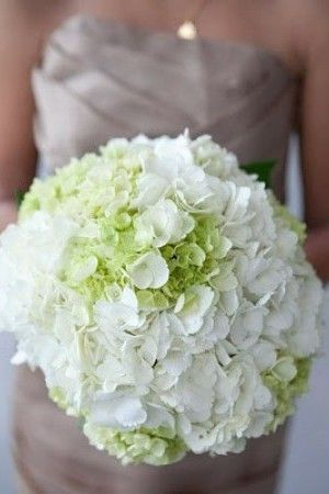 white and green hydrangea bouquet. Flowers from bush in backyard that was planted for B. MawMaw.