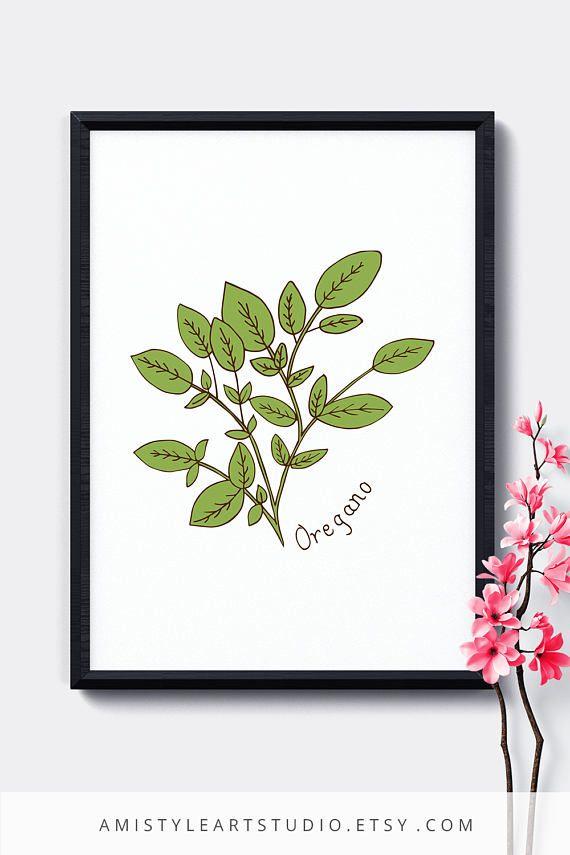 Botanical Herbs Print - Oregano - printable kitchen decor with hand drawn botanical oregano plant by Amistyle Art Studio in Etsy