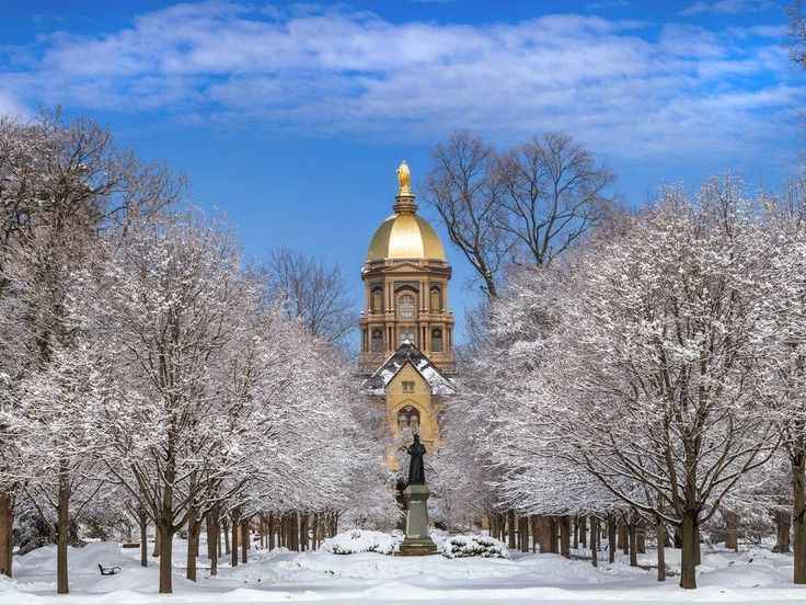 The hardest college to get into in every state Notre