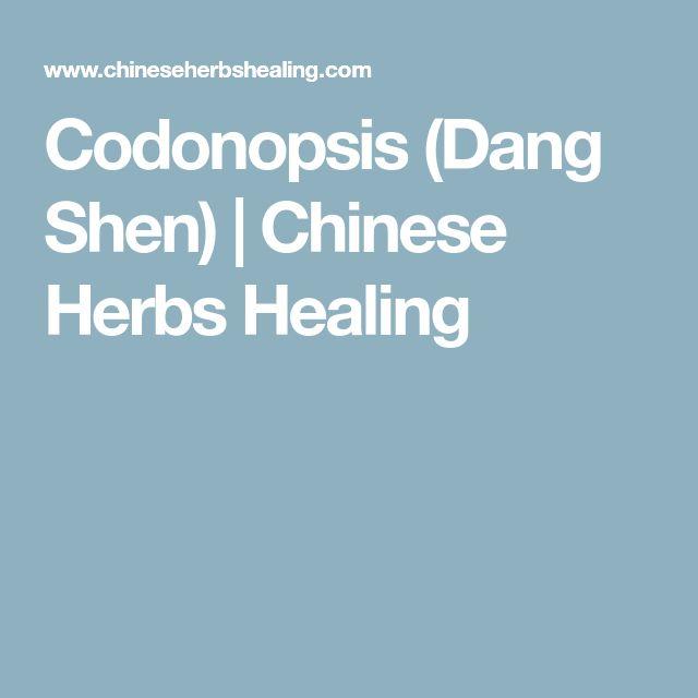 Codonopsis (Dang Shen) | Chinese Herbs Healing
