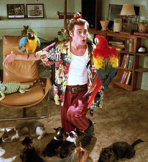 Ace Ventura: Pet Detective or Cronkers rescued pets? Hmmmm.......