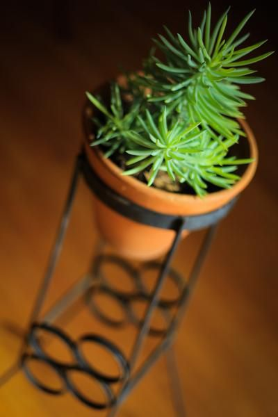 Retro Iron Pot Plant Stand