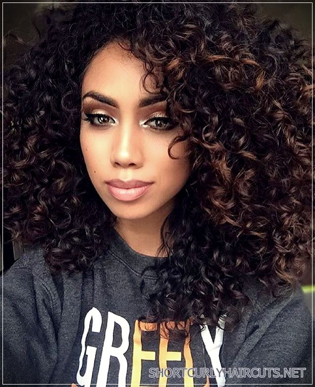 Getting The Best Hair Color For Curly Hair Short And Curly Haircuts Curly Hair Styles Naturally Curly Hair Styles Natural Hair Styles