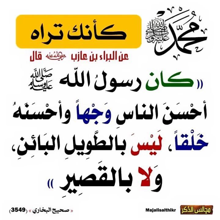 Pin By نشر الخير On أحاديث سيدنا محمد صلى الله عليه وسلم Islamic Quotes Quotes Hadith