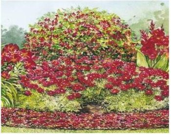 Best 20 Flower garden layouts ideas on Pinterest Spring hill