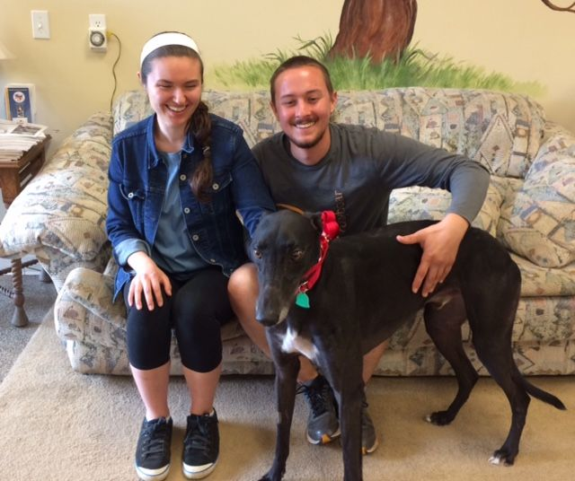 Grego with his new mom & dad, Marissa & Nick.  Congratulations to this new #fureverfamily! #adoptaretiredracer #gpi #greyhound #greyhoundpetsinc #greyhoundsmakegreatpets