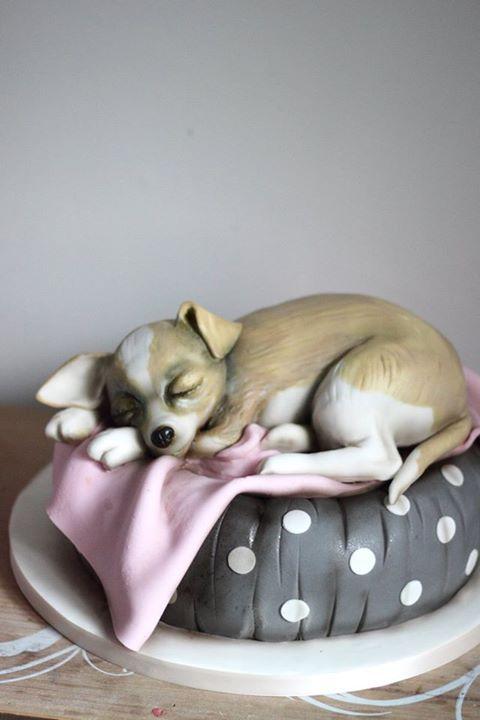 www.cakecoachonline.com - sharing...Sleeping dog cake art