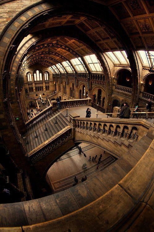 Stairs at the Natural History Museum in London