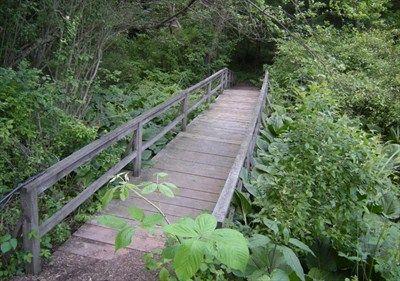 Braille Trail, Latodami Nature Center, North Park, Pittsburgh, Pennsylvania - Hiking Path Footbridges on Waymarking.com