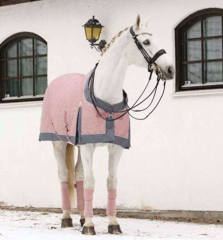 Dusty pink on a lovely grey! 1 thing that makes the picture a little less pretty is that the tail of the horse is yellow. IF you want a white tail, make sure you have a look in my bord 'Grooming tips'! I revealed a secret over there for a white tail! - Jupinkle