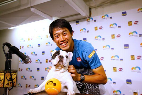 Kei Nishikori and Manny the Frenchie
