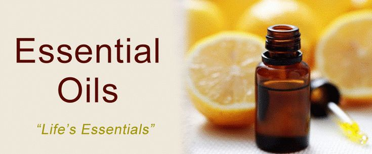 Essential oils, also known as volatile or natural oils, typically extracted from the seeds, roots, flowers, leaves, stems, bark and other parts of plants by distillation or from steam. They contain characteristic fragrance of the plant from which it is extracted. #Essential_oils are highly concentrated and used in perfumes, cosmetics, soaps and many other products for adding fragrance.