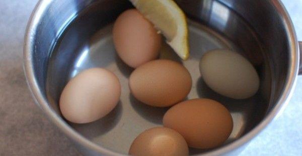Βάζει τα αυγά να Βράσουν και Ρίχνει μέσα μία Φέτα Λεμόνι. Ο λόγος