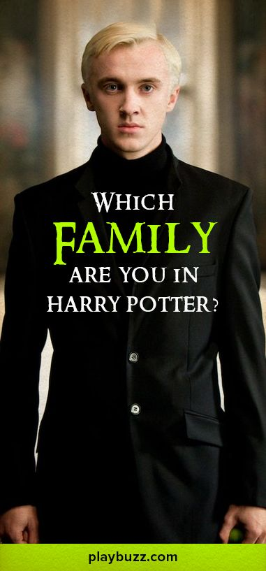 What family would you fit into best in Harry Potter? Take this quiz and find out?