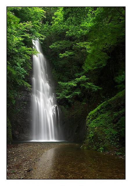 Water Fall - Tokyo Japan