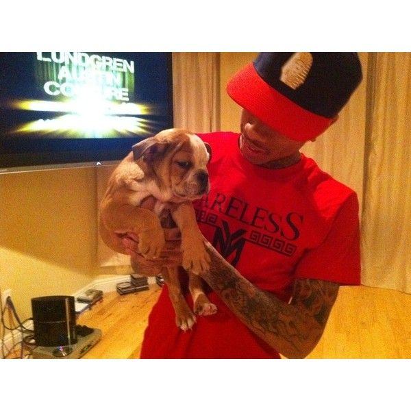 Tyga | Last Kings ❤ liked on Polyvore featuring tyga, pictures, people and pics