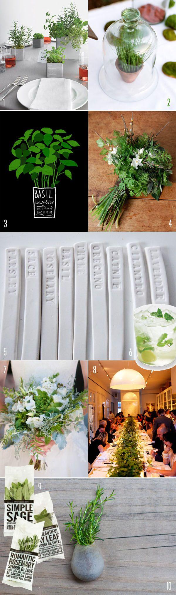 top 10: modern herb details