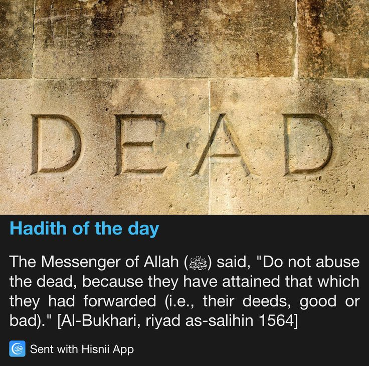 88b4c84d45aa72bb726639a9d7f6560f  beautiful mosques prophet mohammed - Hades Of The Day (Daily Update)