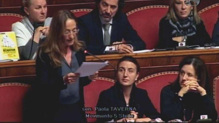 L'intervento di Paola Taverna - Servizio Pubblico