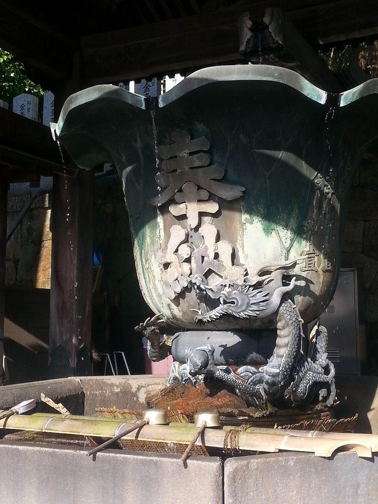 Nara Deer Park &Todai-ji Temple  (東大寺) #japan #travelblog