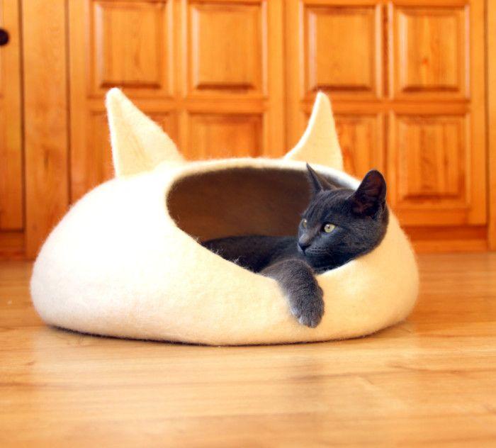 cucce-lettini-gatti-cani-appartamento-interno-casa-divertenti-spiritose-10