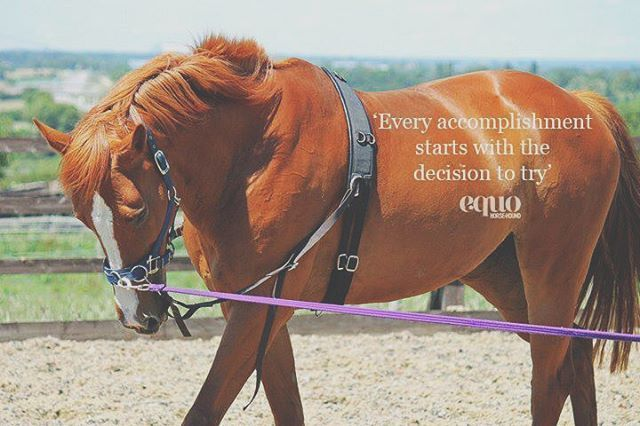 Every accomplishment starts with the decision to try. #TransformationTuesday #EquoEvents