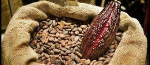 cacao-ghana #kawateachoc