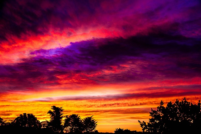 Pink Purple Yellow, Ombre Sunset