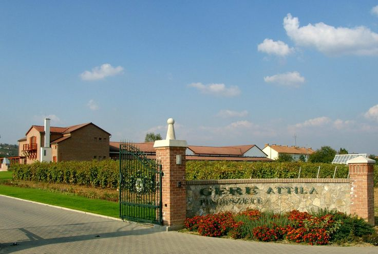 Gere Attila Pinceszete- Winery - Villany, Hungary
