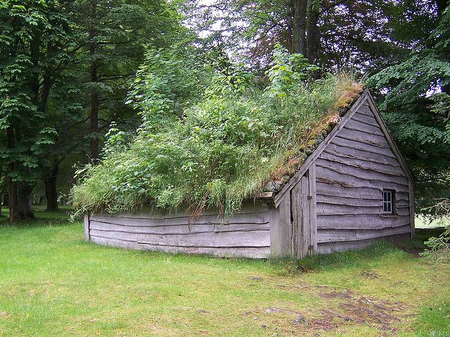 1000 Images About Grass Roof Sod Roof On Pinterest