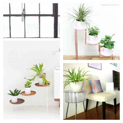 Id es de porte plante et support de pot de fleur d 39 int rieur green terrarium pinterest Support plantes interieur