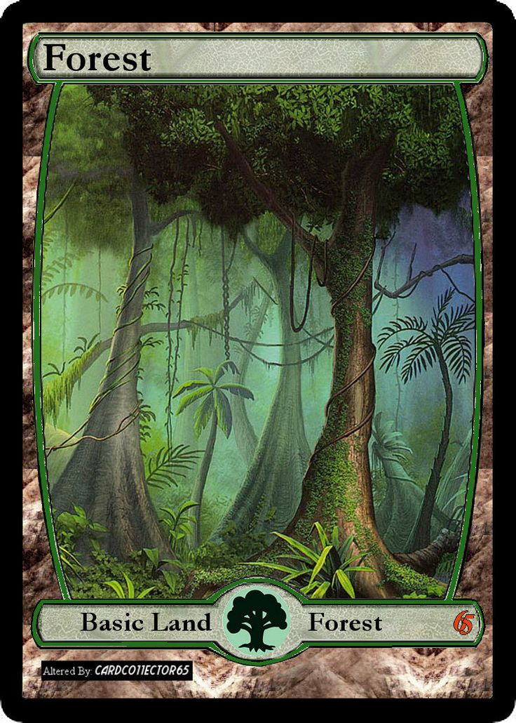 Forest (264 C) Kaladesh Foil Magic The Gathering MTG Card Kingdom