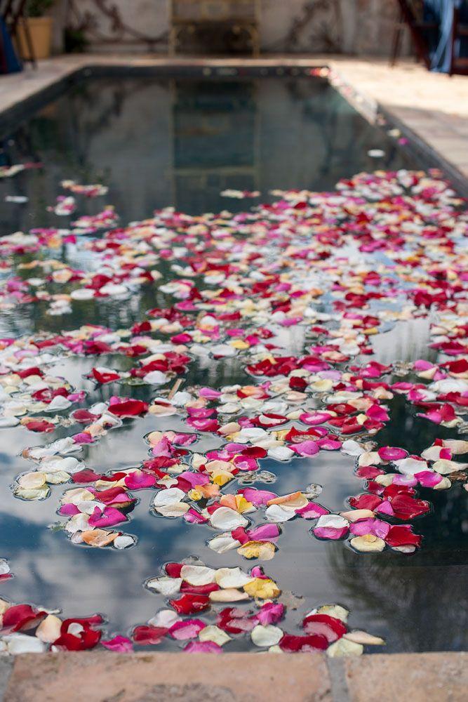 23 best Floating Flowers images on Pinterest | Floating flowers ...