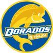 Dorados vs Zacatepec Siglo Jan 10 2017  Live Stream Score Prediction