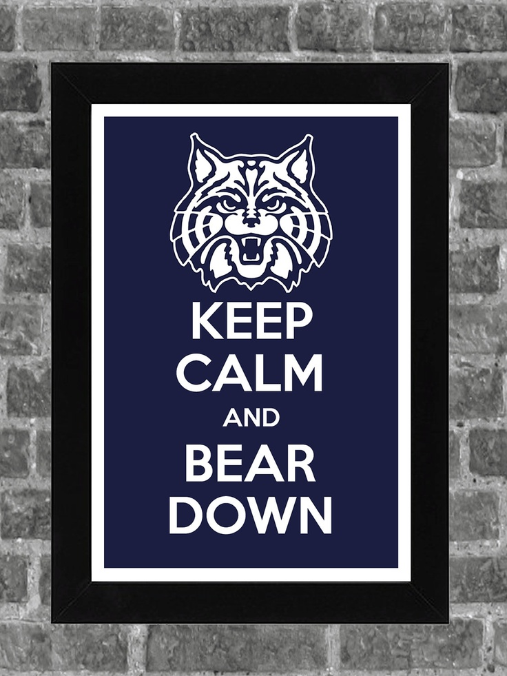 Keep Calm Arizona Wildcats NCAA Print Art might get that for my brother or sister