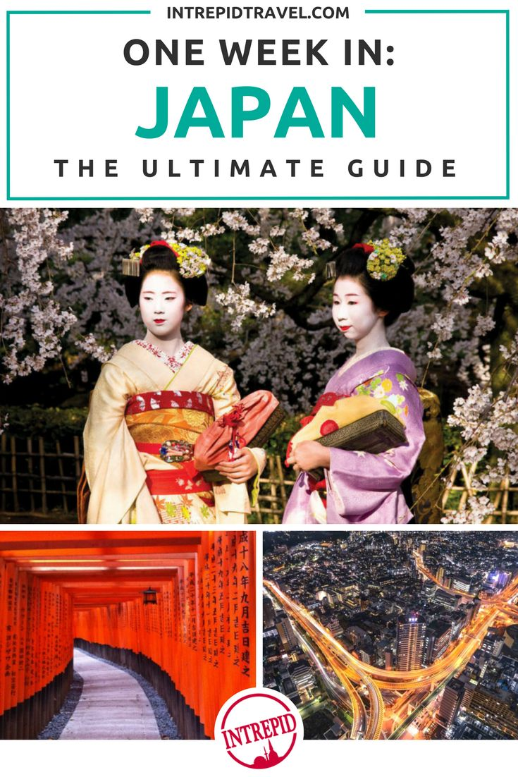 One week in Japan: The Ultimate Guide