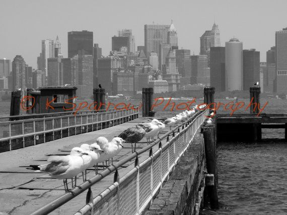 Liberty Island  25 of the sale proceeds will be by ksparrowphoto, $15.00