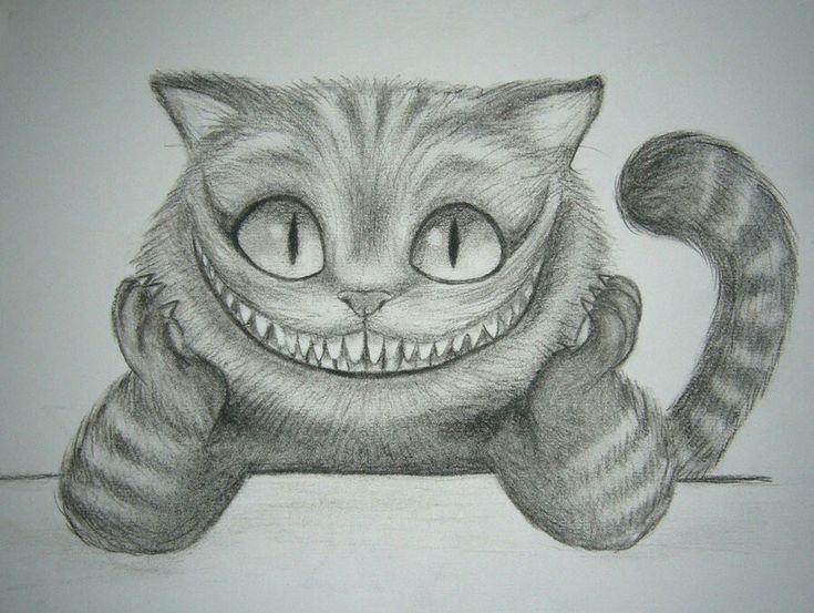 Gato risonho heuheuheu