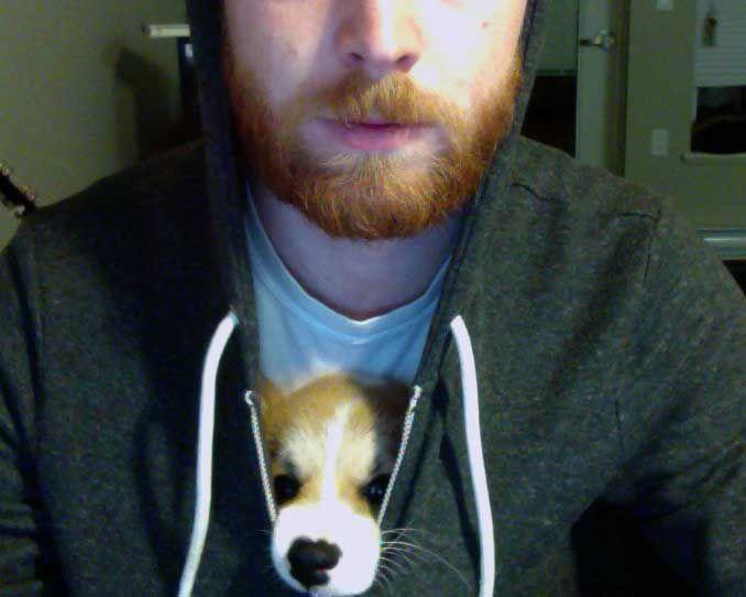 Smuggling a corgi puppy