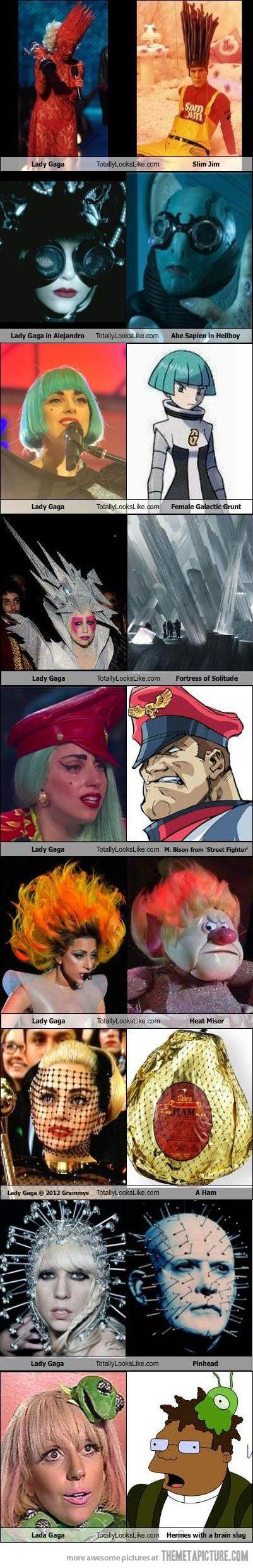 LOL Lady Gaga Totally Looks Like! ..  #ladygaga #funny