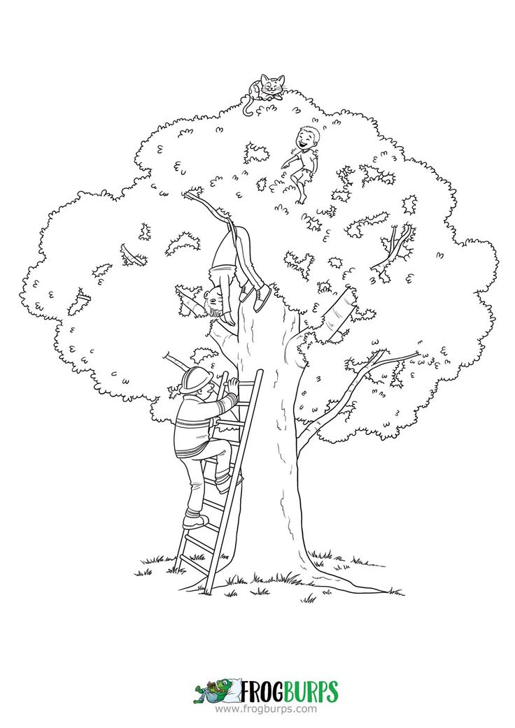 Up a Tree   Coloring Page