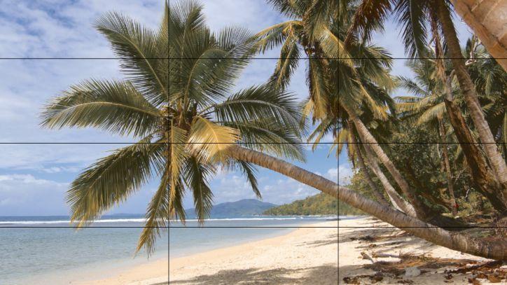 Фотоплитка Пальмовый пляж http://keramida.com.ua/fotoplitka/36-fotopanno/2510-fotoplitka-palm-beach