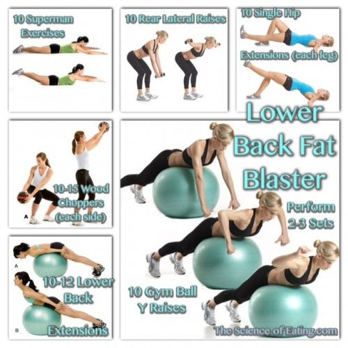Workout Lower Back Fat Blaster