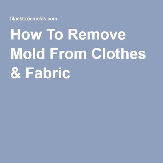 1000 Ideas About Remove Mold Stains On Pinterest Remove