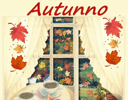 autunno,gif autunno,immagini autunno,foglie che cadono,
