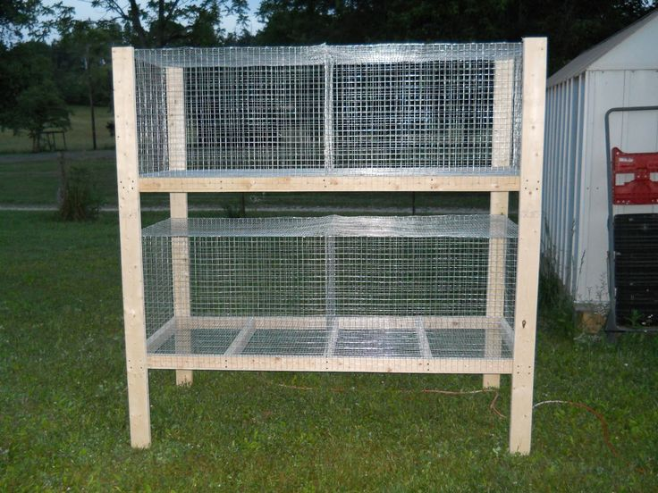 Rabbit hutches for multiple rabbits after i showed her for Rabbit hutch plans easy