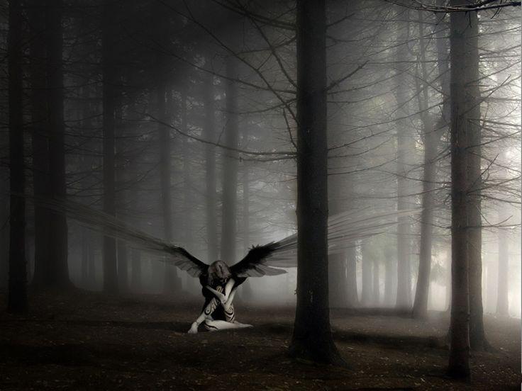 Imagem mundo: Anjos sobre o mundo #wings, human, woman, trees, forest, b&w