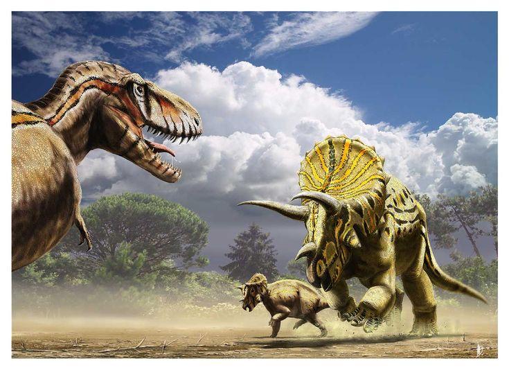 Tyrannosaurus vs Triceratops by dustdevil deviantart com on  deviantART
