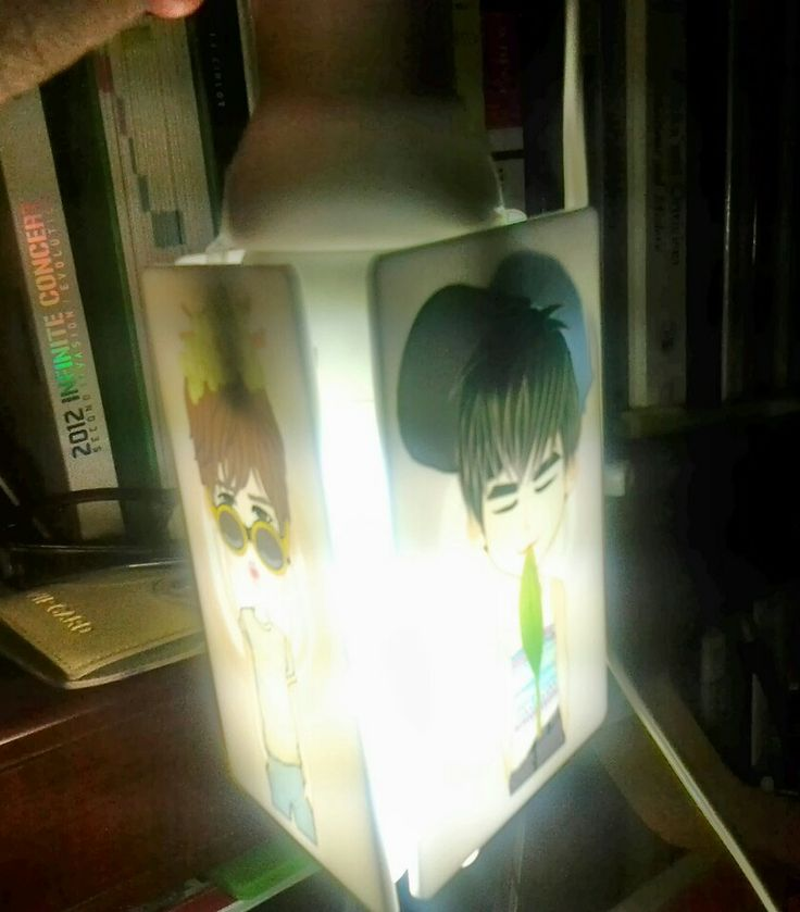 "Acrylic Lamp Cover ""Gyu n HOya"""