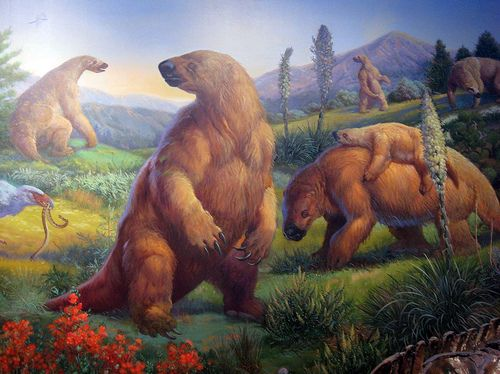Giant Ground Sloth - Megatherium was one of the largest land mammals known, weighing up to 4 tonnes[8] and measuring up to 6 m (20 ft) in length from head to tail.[9][10] It is the largest known ground sloth, as big as modern elephants, and would have only been exceeded in its time by a few species of mammoth. The group is known primarily from its largest species, M. americanum. Megatherium species were members of the abundant Pleistocene megafauna, large mammals that lived during the…